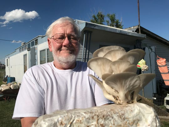 David Schaibley shows how he grows mushrooms on blocks of straw in Valier. His venture, D.E.S. Mushrooms, sells out at every single farmers market.