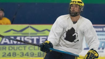 The Made in Michigan Hockey Elite League attracts pro and college players looking to maintain their competitive edge during the summer.