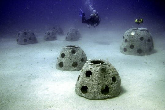 Eternal Reefs is a company that mixes cremated remains with concrete to create reef balls that are deployed off coasts from Texas to New Jersey.