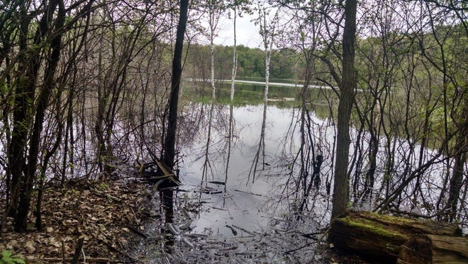 The water in the ponds on the Apps' farm have ebbed and flowed over the past 80 years.