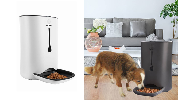 Keep Fido fed even while you're away.