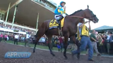 A LOOK BACK: After winning the Triple Crown of horse racing, America Pharoah draws big crowds to Monmouth Park for the 2015 Haskell race.