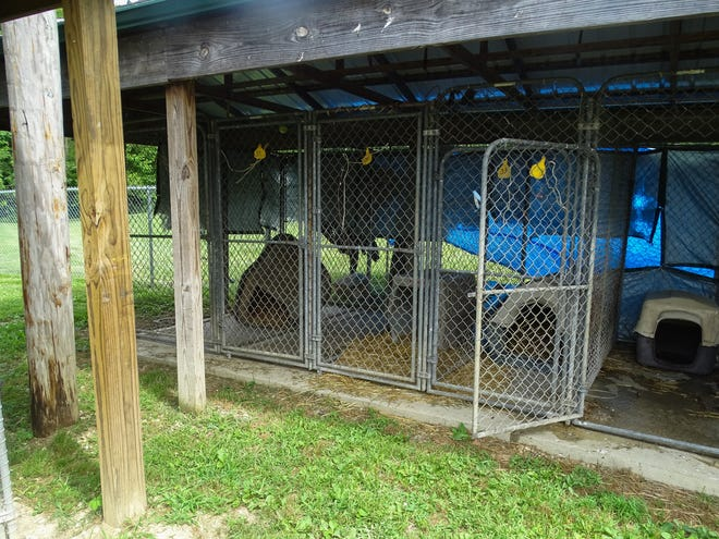The Ross County Humane Society only uses outdoor kennels if they have no other space for the dogs. The kennels are completely in the shade and provide plenty of fresh water to the dogs. Residents who keep their dogs outdoors should follow the shelter's model.