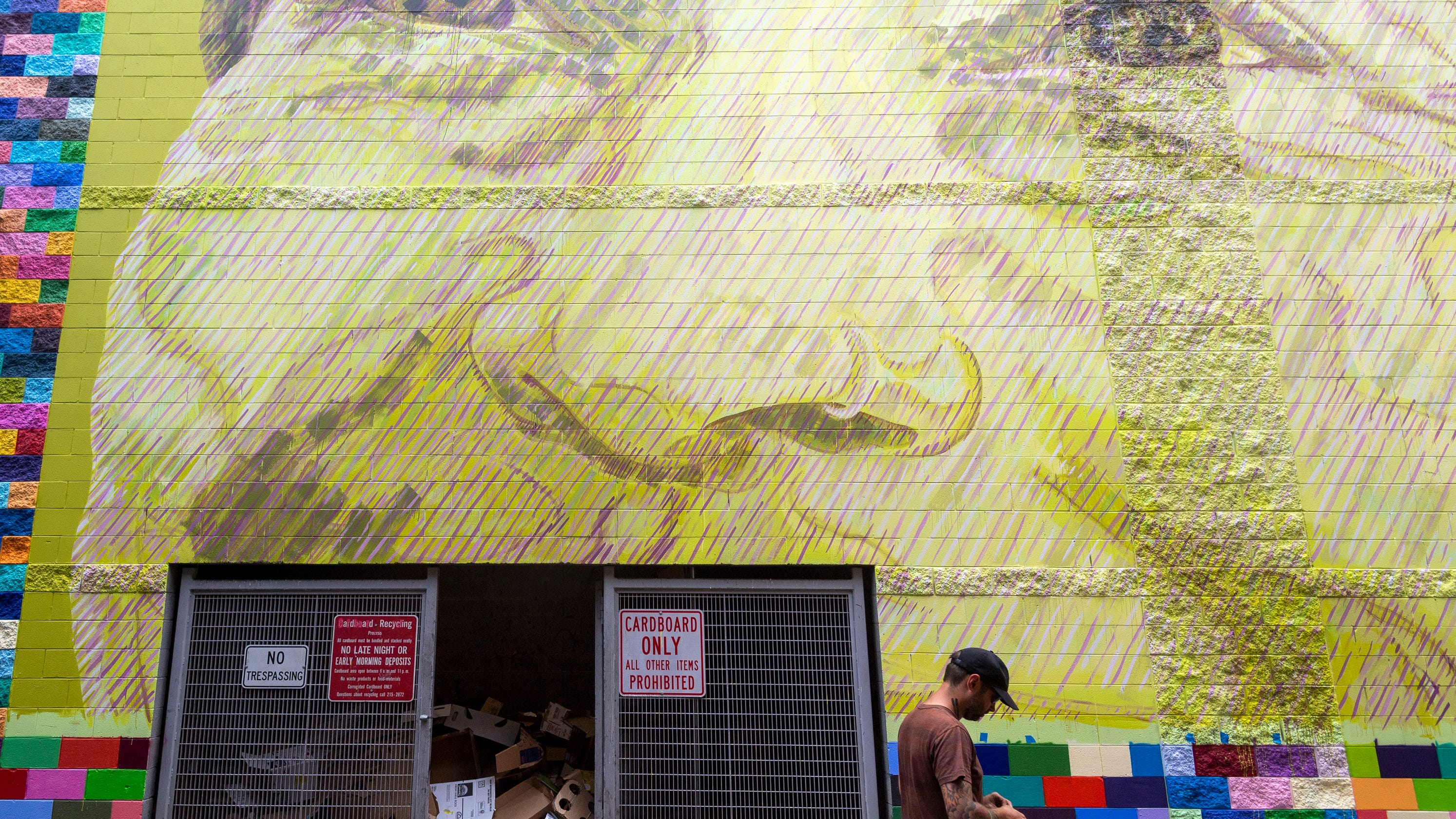 Downtown Knoxville's new mural covers Market Square garage wall