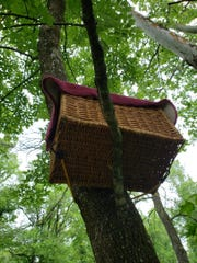 Picture of substitute nest made from a wooden house basket.