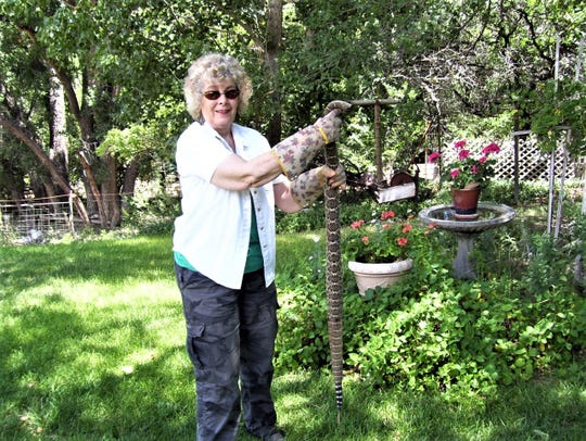 Lincoln resident Lynda Sanchez, author and historian, holds the intruder killed in her garden by husband James Sanchez.