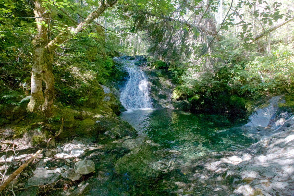 Explore emerald pools of Elk Lake Creek via wilderness
