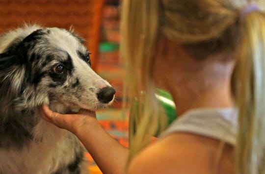 Eleanor Perkins gives Chloe the dog a scratch under her chin during a program to help kids learn to read at Stephens Central Library on Tuesday, July 16, 2019.