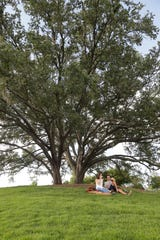 Miranda Ave and Michael Moxom share a pizza and a bottle of wine under two live oak trees in Cascades Park Sunday, June 30, 2019.
