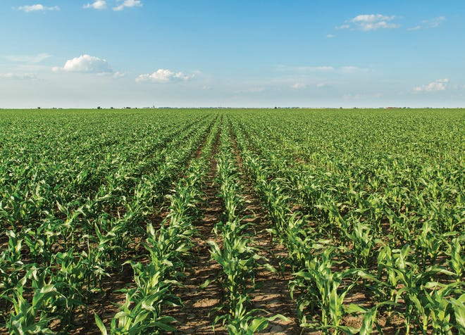 Wisconsin has come a long way in recent years when it comes to implementing nutrient management plans on its farms, but it still has a long way to go.