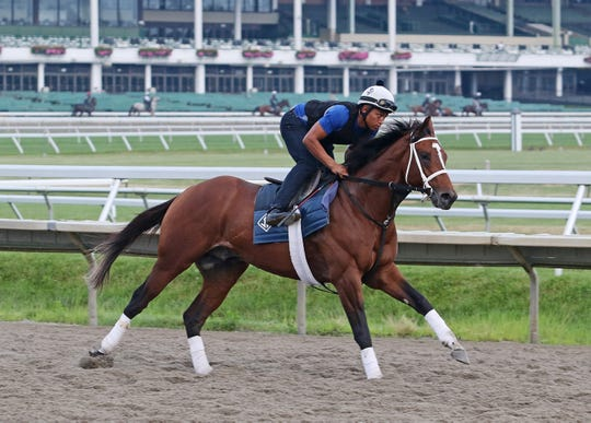 Maximum Security gallops at Monmouth Park  on Wednesday morning with exercise rider Alvaro Tomas aboard.