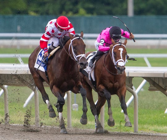 King for a Day (left), shown defeating Maximum Security (right) in the TVG.com Pegasus on June 16 at Monmouth Park, is a major contender in the $1 million TVG.com Haskell Invitational
