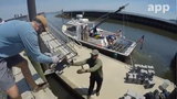 The NY/NJ Baykeeper is deploying 'castles' near the Naval Weapons Station Earle pier in the Raritan Bay that serves as a home to a growing oyster colony.