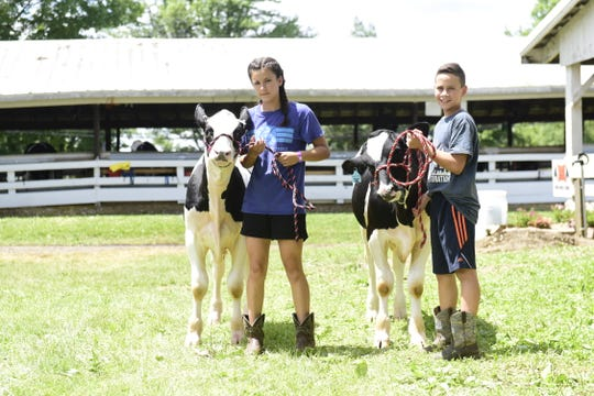 Nora Harding, 13, and her brother, Grady, 12, work their dairy market feeders Wednesday ahead of their show at the 2019 Crawford County Fair.