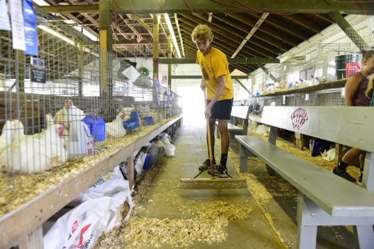 Jaron Filliater, 15, sweeps the poultry barn Wednesday during the 2019 Crawford County Fair.