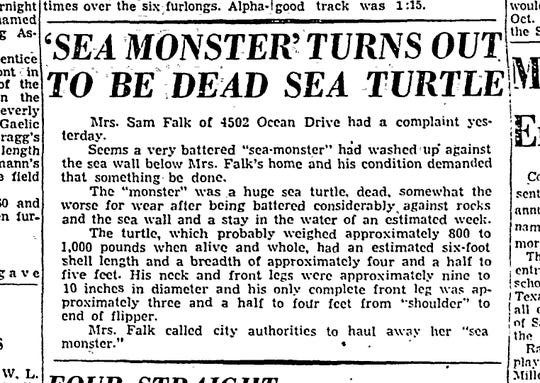 "The remains of a huge dead turtle that washed up near Ocean Drive in March 1952 were dubbed a ""sea monster"" briefly. The remains were carted away by the Corpus Christi street department."
