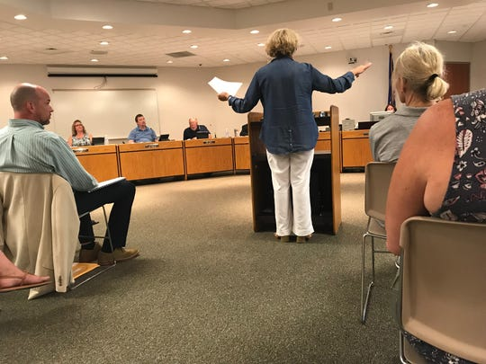 Ad Hoc West Waterfront Planning Committee Co-chair Laurel Hauser presenting the group's plan to Sturgeon Bay Common Council.