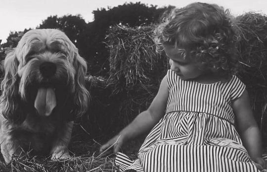 Heather Lynch's first portrait shoot using film;her grandmother Mary Jean McManushelped her set up this photo of Lynch's daughter Taylor Harris and her Uncle Joe's dog.