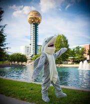 Discovery's Shark Week Family Fin Fest will return to Market Square on July 24.
