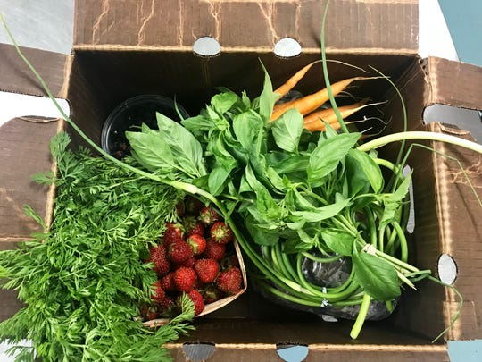 A Veggie Box from the Allen Neighborhood Center featuring saskatoons, strawberries, basil, carrots and greens.