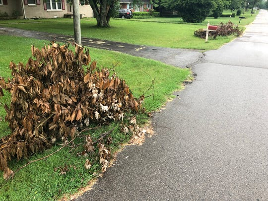 "Gallatin Public Works Director Zach Wilkinson said the department has ""been struggling and working really hard to keep up with the increase in brush pickup,"" which continues to pile up as residents do yard work or as storms roll in."