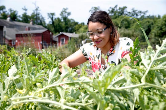 Jasmin Vazquez assistant executive director of Heroic Food looks through one of the rows of vegetables at Sprout Creek Farm in the Town of Poughkeepsie on July 16, 2019