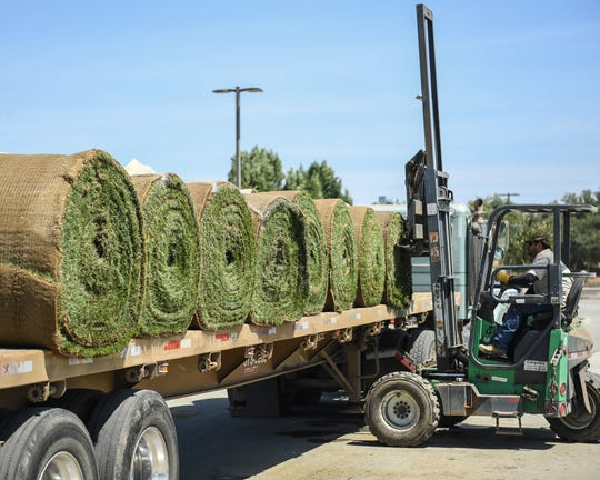 More rolls of sod are trucked in on June 17, 2019 to be rolled out and watered.