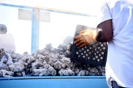 Freshly steamed clams stack higher and higher at the 43rd Annual Tawes Crab and Clam Bake in Crisfield, Maryland, on July 17, 2019. Organizers said the event ordered about 38,000 clams in total.