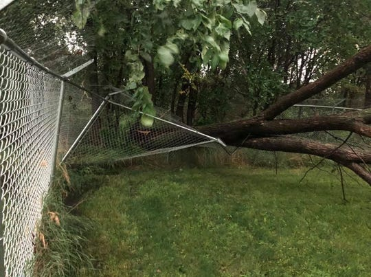 A fallen tree crushes a fence in Lennox, South Dakota after a severe storm caused widespread damage in southeast South Dakota on July 17, 2019.