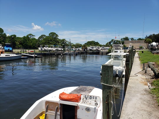 All is quiet on the algae hunt July 16, 2019 at the marina basin at Outboards Only in Rio.
