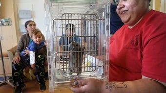 Zoo Animals Bring Joy and Wonder to El Paso Children's Hospital Patients