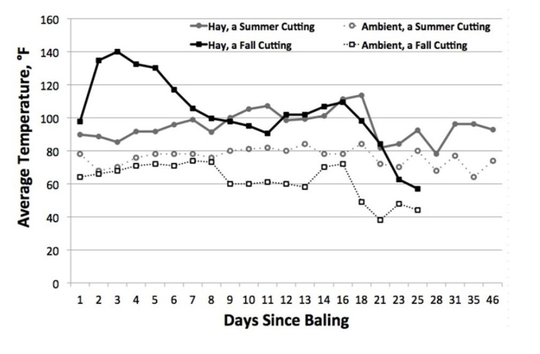 Temperature of round bale alfalfa hay from summer (16% moisture) and fall (20% moisture) cuttings relative to the ambient air temperature during the first few days after baling.