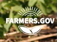 Online tool helps farmers find loans