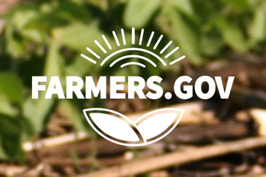 Last year, USDA unveiled farmers.gov, a mobile-friendly public website combined with an authenticated portal where farmers will be able to apply for programs, process transactions and manage accounts.
