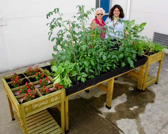The 21st Century Community Learning Center, an after-school and summer program, built a raised garden bed in a courtyard at Soehl Middle School. Pictured from left are paraprofessional Deborah Okun, who led the effort, and Soehl Vice Principal and 21st Century Director Isabella Scocozza.