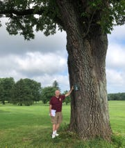 Union County Master Tree Steward volunteer Dean Talcott shows where a name tag is placed on a White Ash growing along the new Tree Trail in Union County's Oak Ridge Park, in Clark. The diamond-like pattern of the bark recalls the use of wood from White Ash trees for making baseball bats. The tree is much older than the park, dating back to the days when the area was farmland.