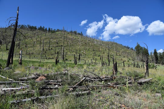 The 2010 Schultz Fire burned over 15,000 acres of forest near Flagstaff.