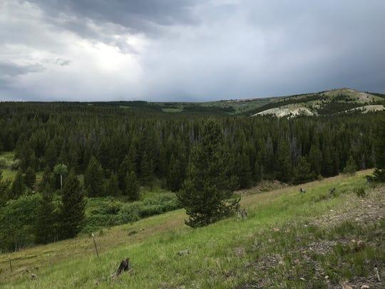 Looking West toward Grassy Mountain on the Mount Haggin WMA