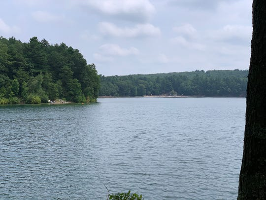 A view of Walden Pond captured near the site where American essayist, poet, and philosopher Henry David Thoreau's cabin once stood. The public beach can be seen at the far end of the lake.