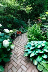 A cozy pathway in the backyard offers a variety of flowers and plants to explore.