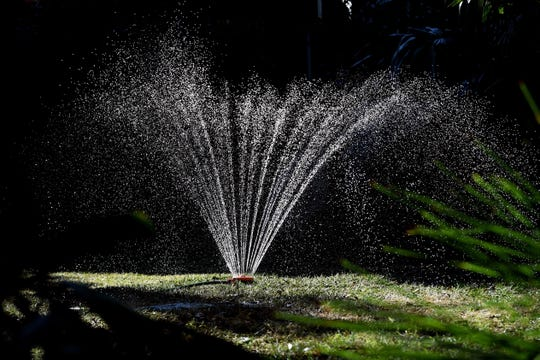 Sprinklers water a large area, but encourage weed growth.