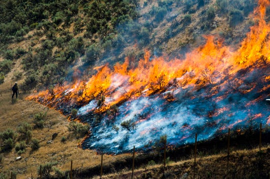"""FILE - In this July 30, 2018, file photo, firefighters control the Tollgate Canyon fire as it burns near Wanship, Utah. The Trump administration is proposing an ambitious plan to slow Western wildfires by bulldozing, mowing or revegetating large swaths of land along 11,000 miles of terrain in the West. The plan announced this summer would create strips of land known as """"fuel breaks"""" in parts of Idaho, Oregon, Washington, California, Nevada and Utah. (Rick Egan/The Salt Lake Tribune via AP, File)"""