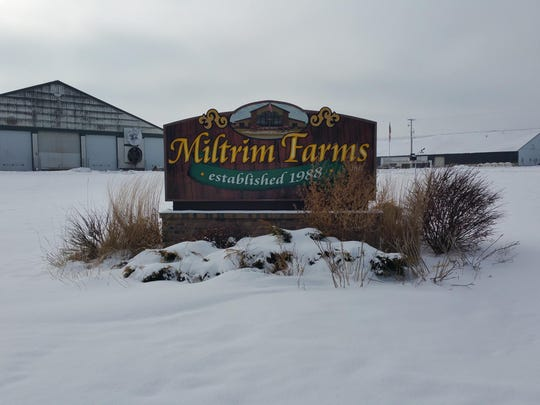 Miltrim Farms near Athens, Wis., has about 1,800 dairy cows and 400 acres of crops.