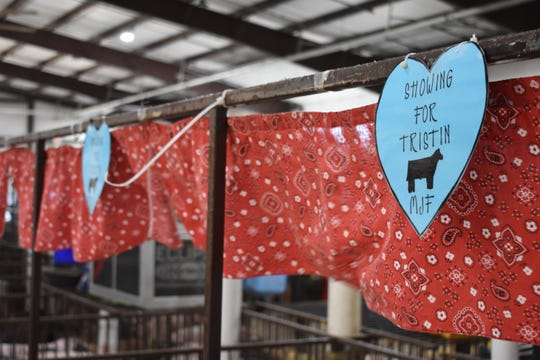 Tristin's 4-H group, Madison Junior Farmers, made heart-shaped signs to support Tristin at the fair.