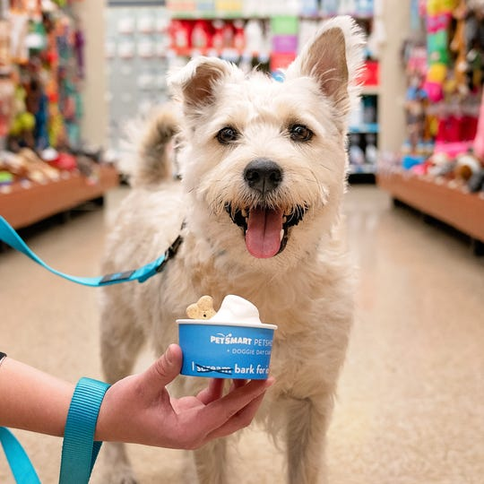 PetSmart has a National Ice Cream Day freebie for dogs July 20-21.