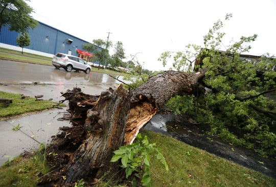 A car passes a fallen tree along College Avenue in Appleton after storms blew through the area Saturday.
