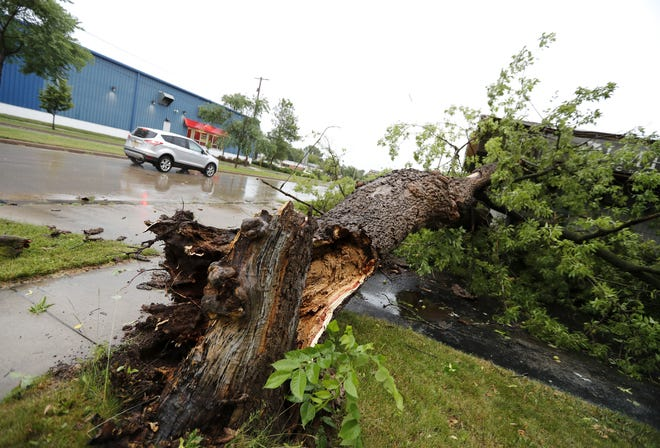 A car passes a fallen tree along College Avenue in Appleton after thunderstorms blew through the area July 20.