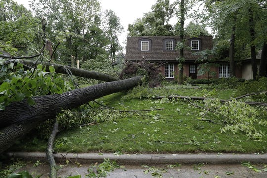 A large tree is uprooted at a home on North McDonald Street in Appleton.
