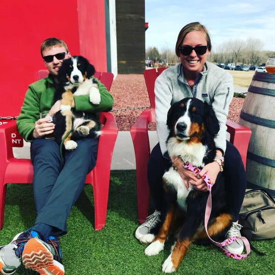 Kyle and Megan Casey hope to open Paws and Pints next year. They recently visited a brewery in Boulder, Colorado, with their Bernese mountain dogs Porter (left) and Kora.