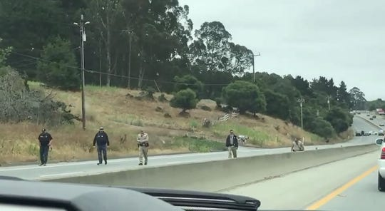 In this video still, CHP searches the ground of Highway 101 in the area of Prunedale. July 20, 2019.